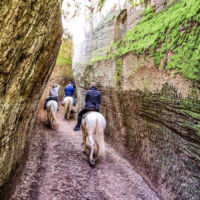 Horse riding in the Maremma area through the Vie Cave, narrow paths that the Etruscans cut into mile-high tuff (tufa) stone. #InstaTuscany #tuscany #maremma #maremma #horseriding #playtuscany #viecave #tufo #tufastone #tuffstone