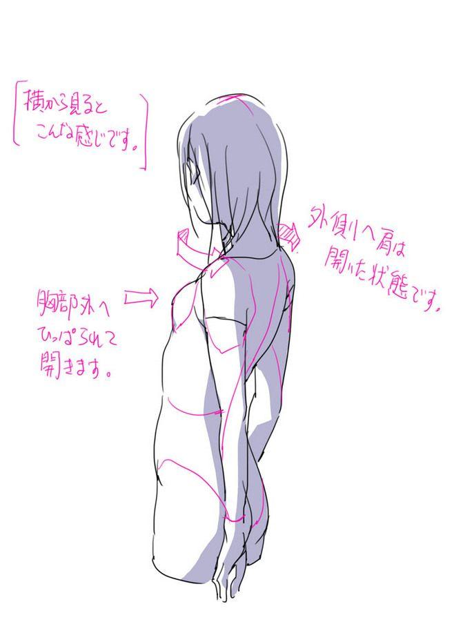 「肩を開く時と狭める時による胸部の動きと...