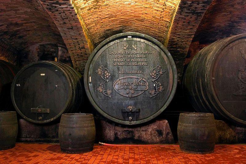 Vinska klet Bistrica