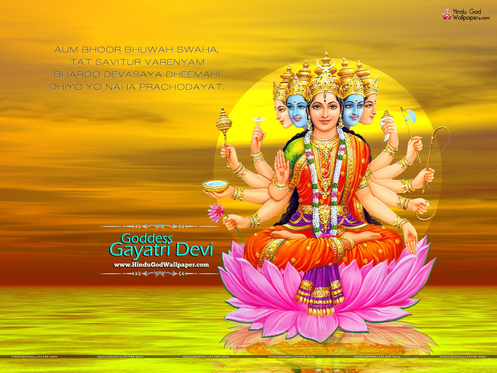 Great Wallpaper Lord Devi - cb1f38a2c84af763445bfaf2ce7fd2dc  Perfect Image Reference_892913.jpg