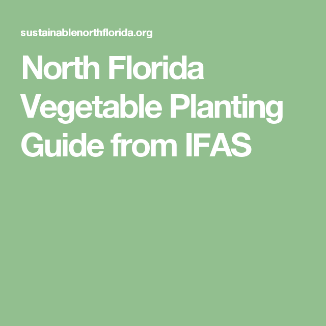 North Florida Vegetable Planting Guide From Ifas Vegetable Planting Guide Planting Vegetables When To Plant Vegetables