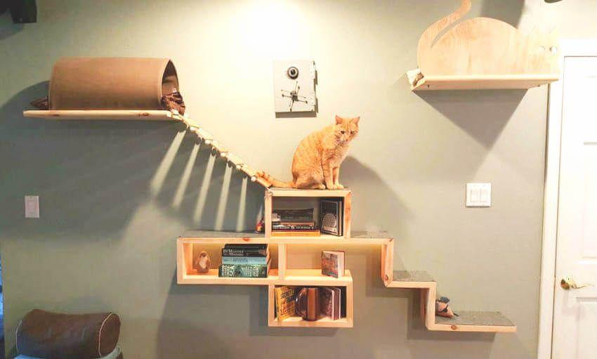 8 Diy Cat Bridge Ideas To Inspire You Diy Cat Tree Cat Wall Cat Playground