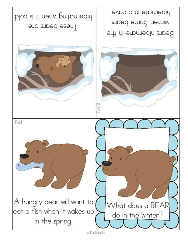 Hibernating Bear Foldable Booklet Worksheets Preschool