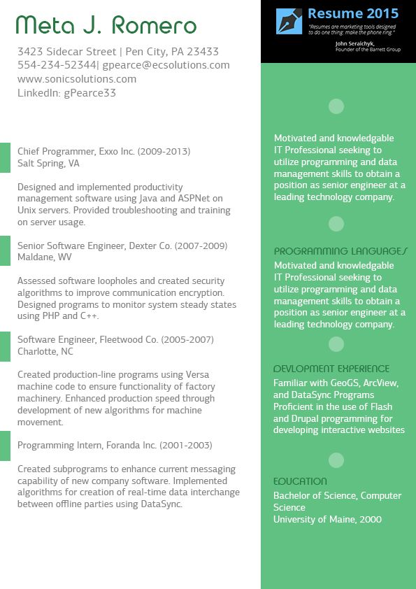Nice Professional Executive Resume Sample Resume Cv Infografico - sample data management resume
