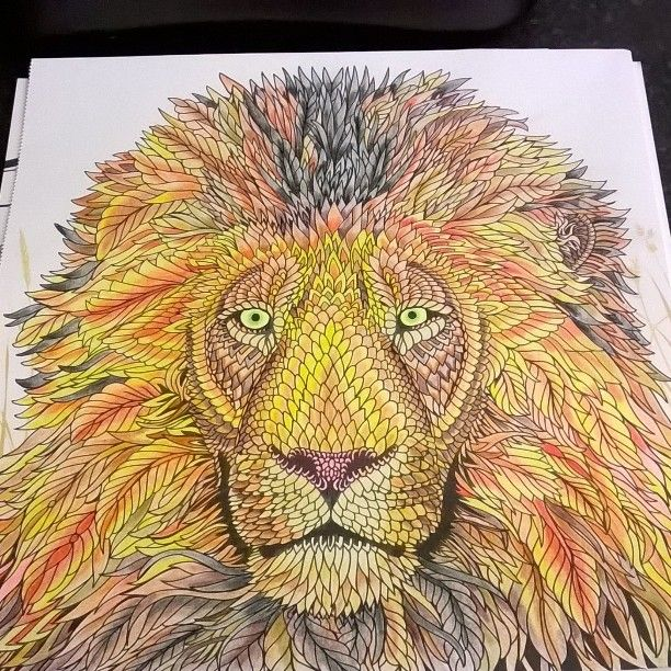 My Lion Colouring From The Menagerie Book TheMenagerie