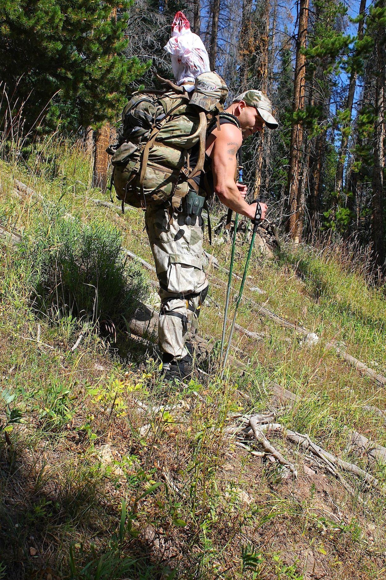 Early Season Elk Tactics Whitetail deer hunting, Elk