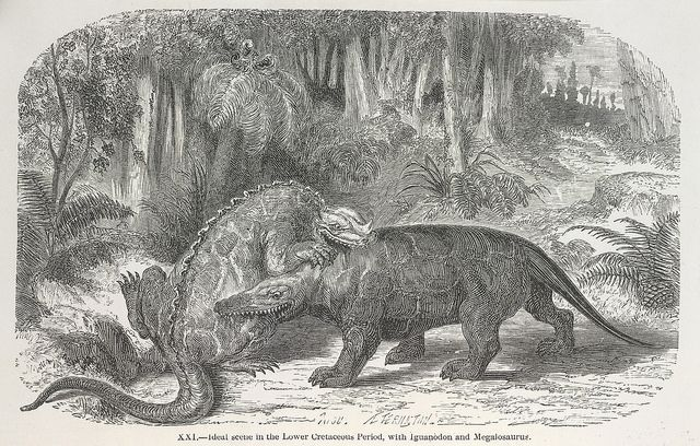 The World before the Deluge - caption: 'Dinosaurs fighting' #historyofdinosaurs Dinosaurs! #historyofdinosaurs The World before the Deluge - caption: 'Dinosaurs fighting' #historyofdinosaurs Dinosaurs! #historyofdinosaurs