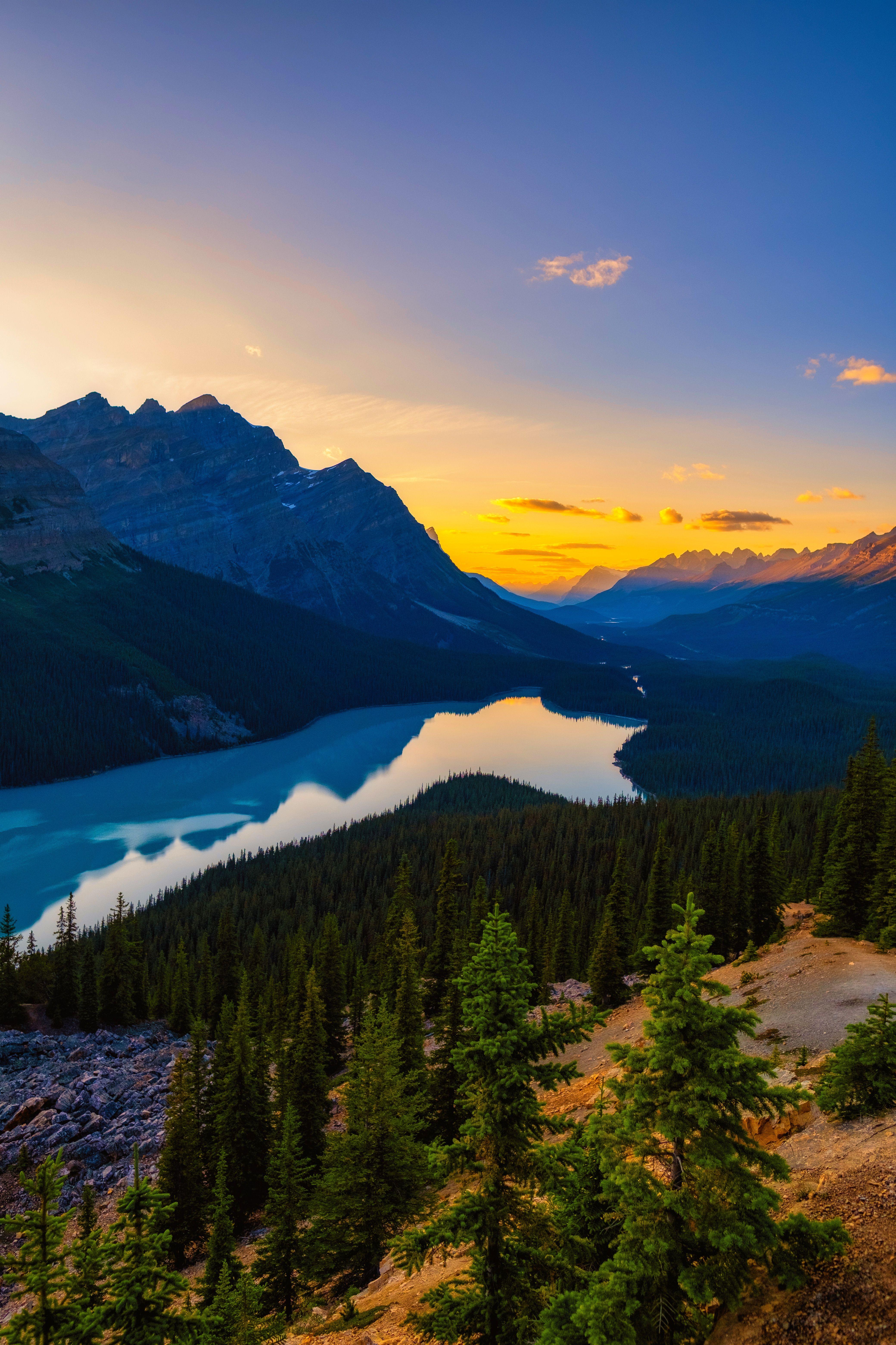 Beautiful Peyto Lake #BanffNationalPark #Peyto #Lake #MountainLife #Alberta