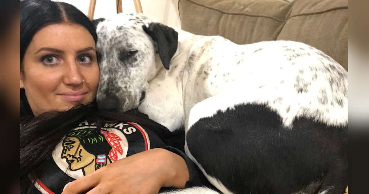Puppy Returned To Shelter Twice Can T Believe She Finally Has A