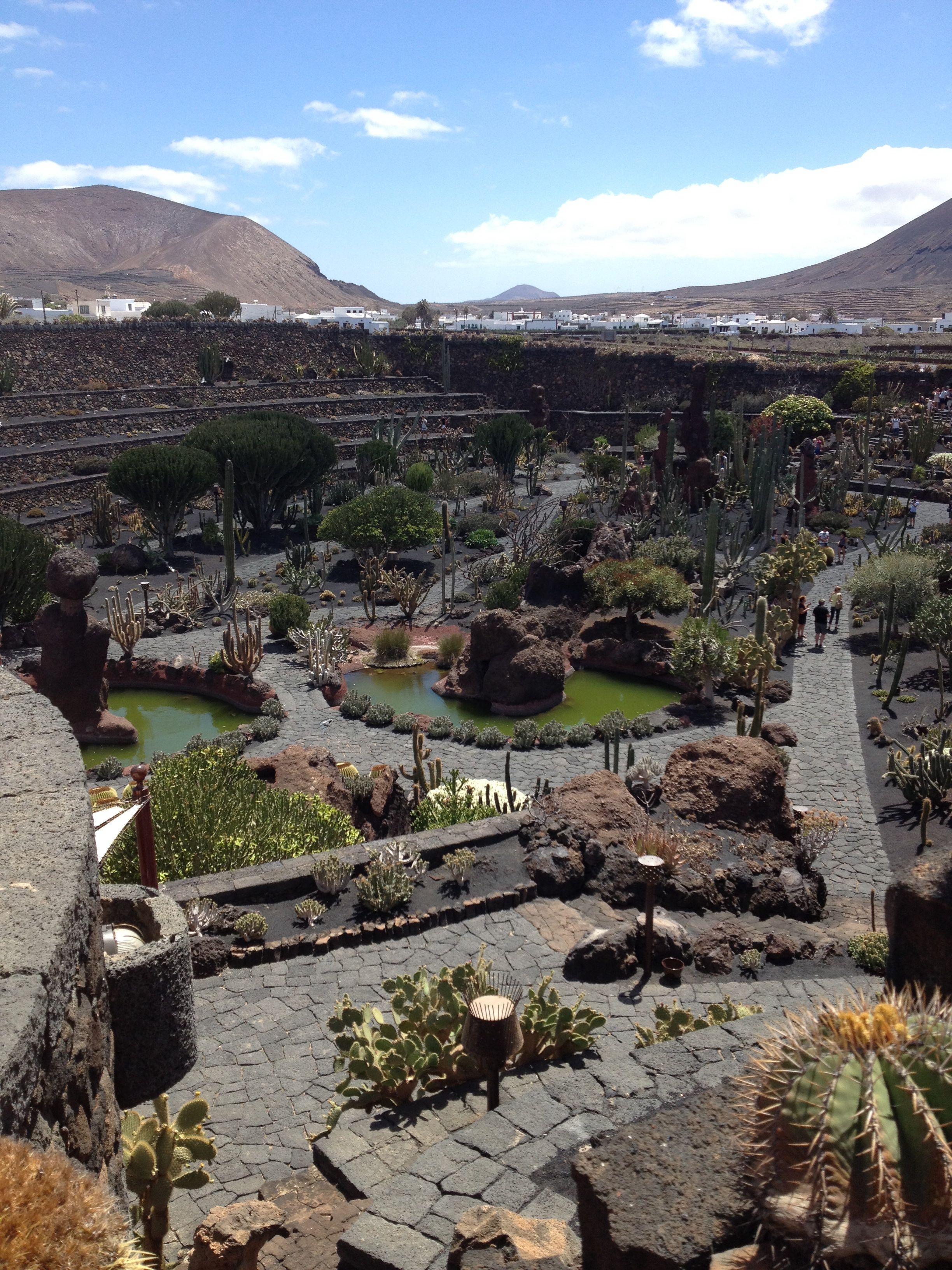 The cactus graden in Lanzarote by Cesar Manrique