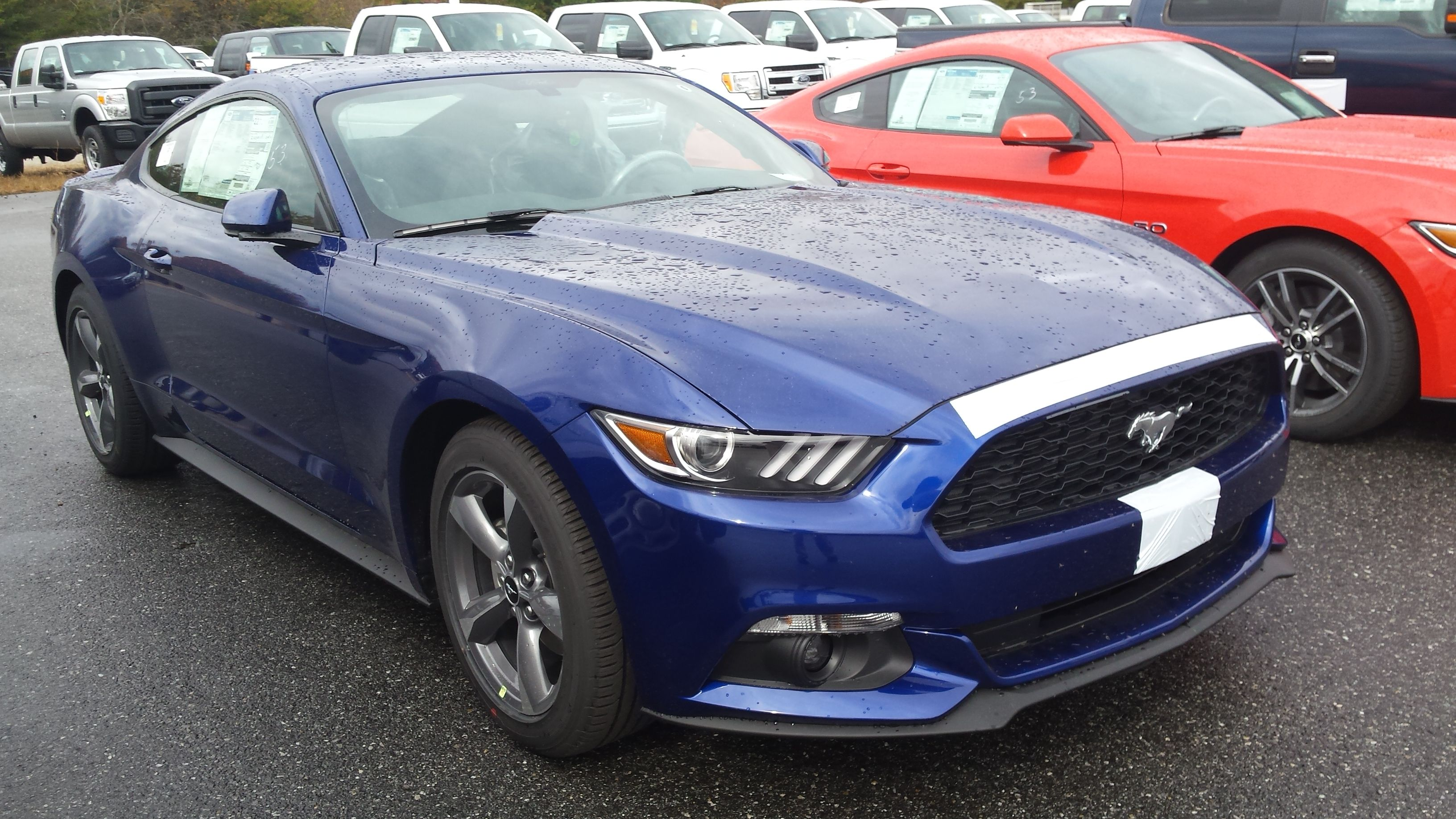 2015 ford mustang v6 in deep impact blue just came off the truck