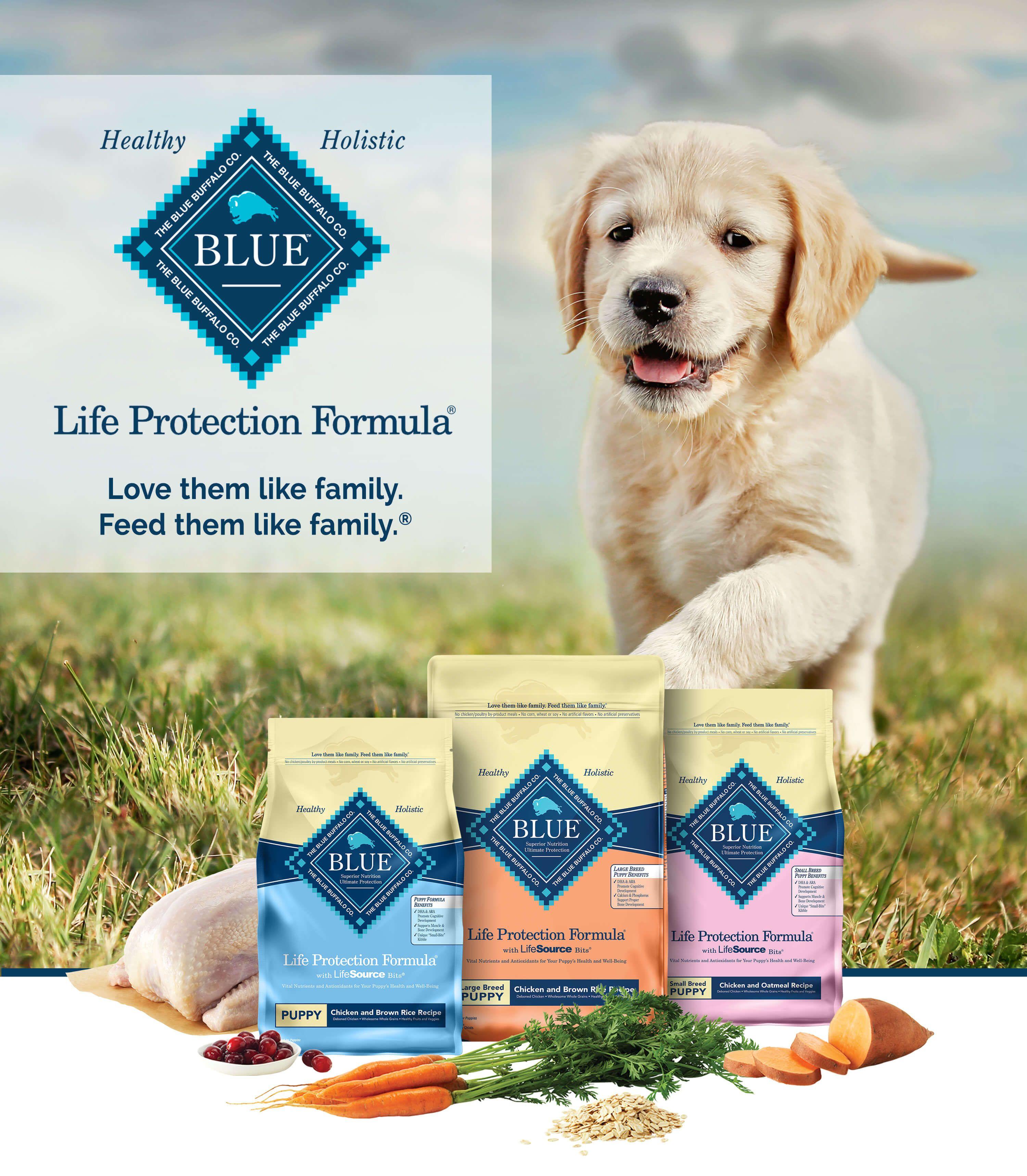 Blue buffalo life protection formula puppy food chicken