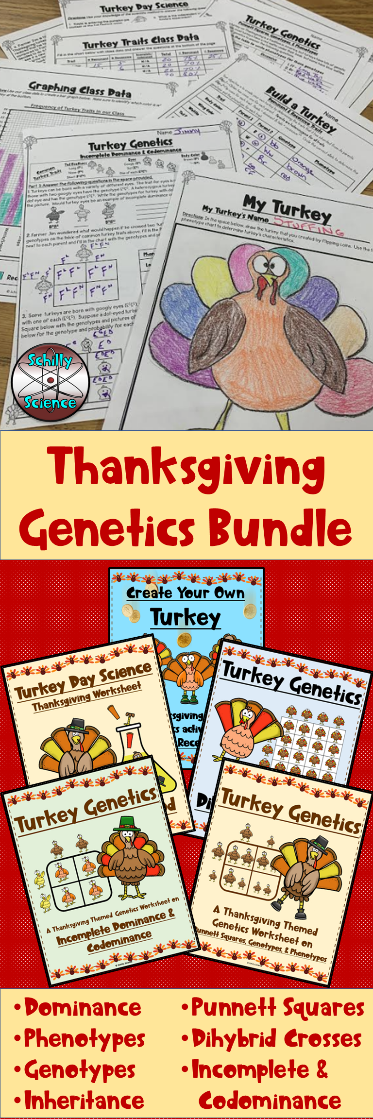 Thanksgiving Worksheet Bundle Middle School