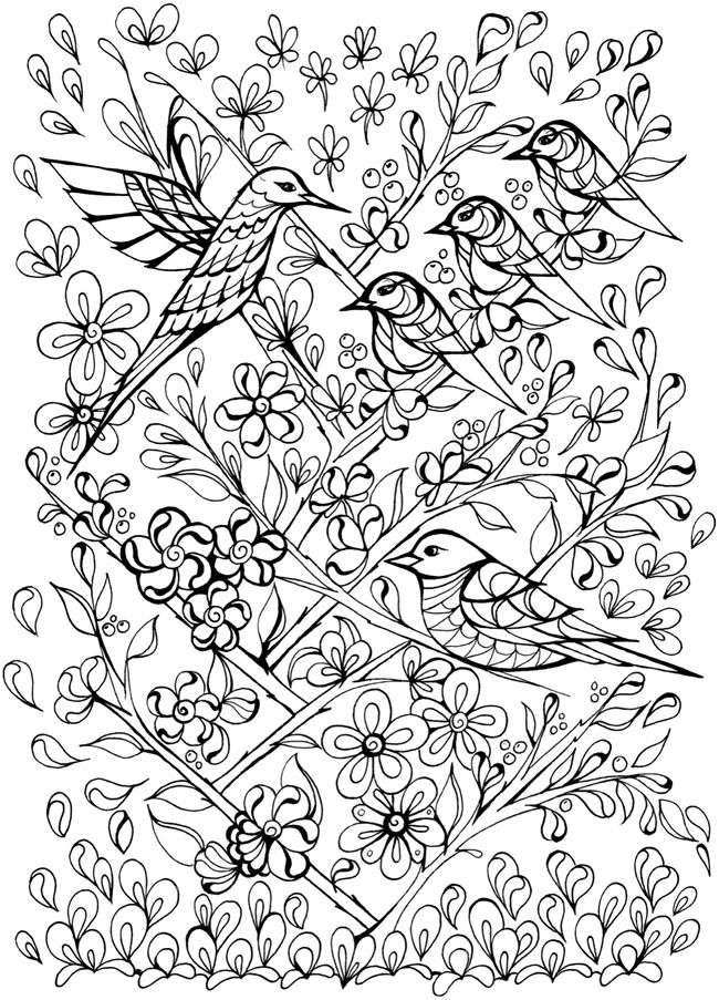 four seasons coloring pages for kids - creative haven deluxe edition four seasons coloring book