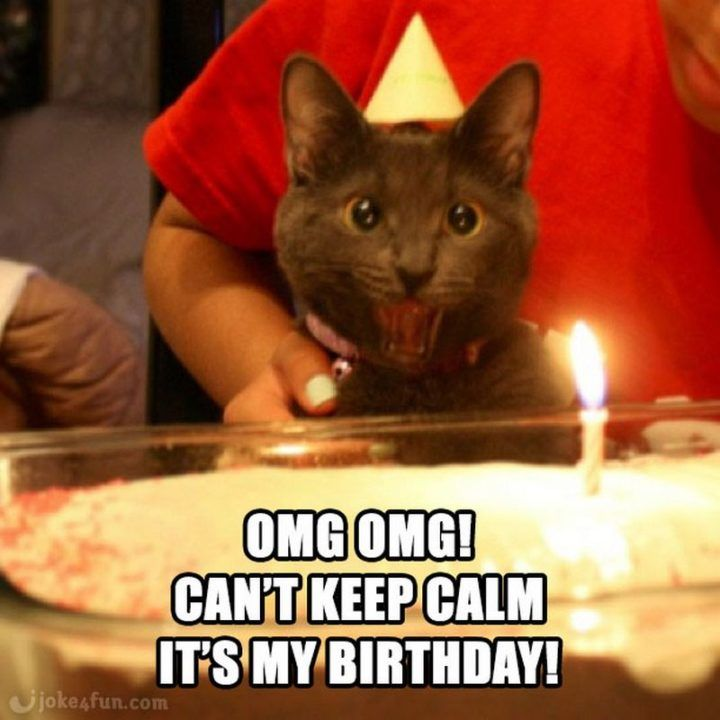 """101 """"It's My Birthday"""" Memes to Share Your Birthday ..."""