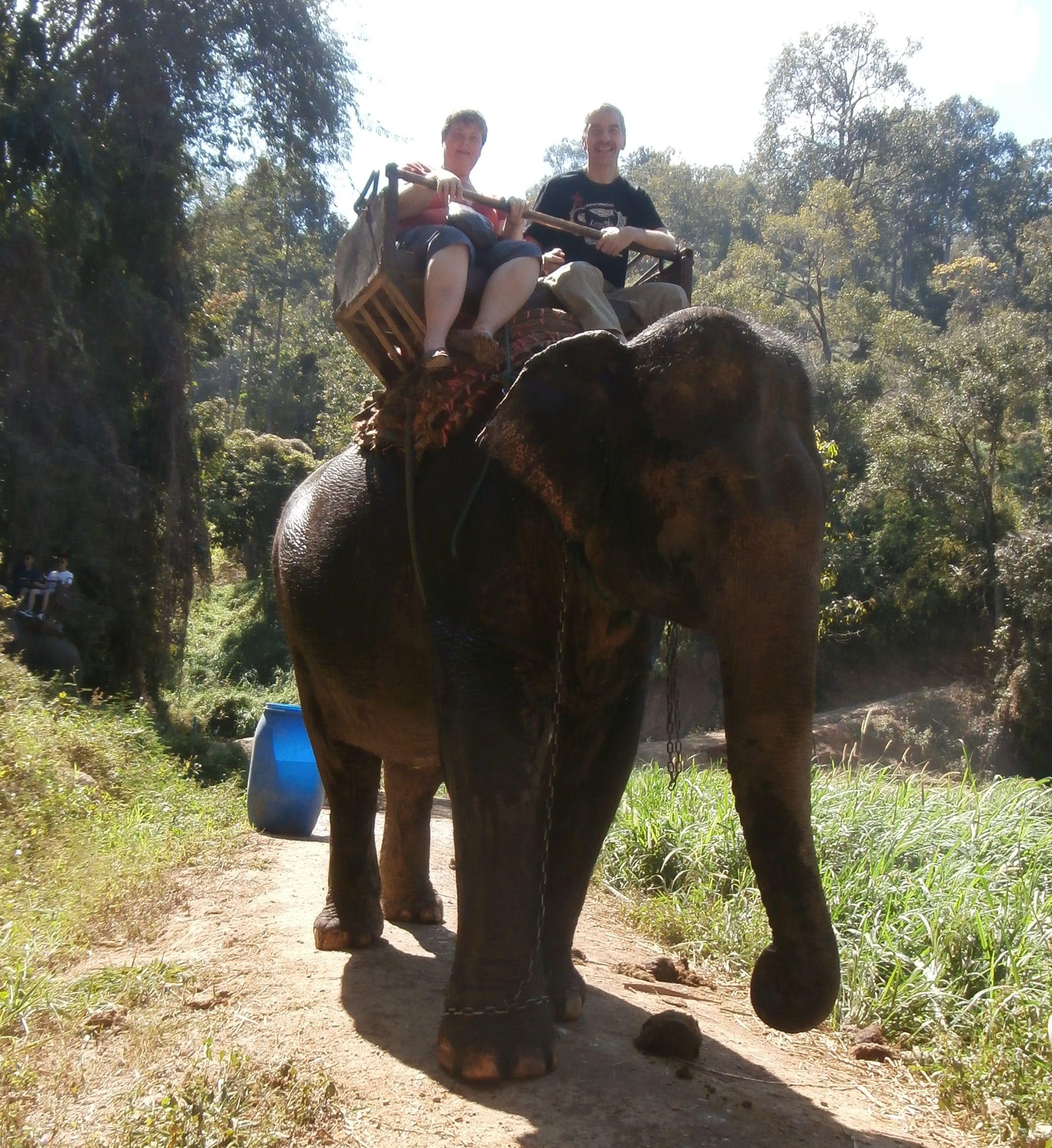 An elephant ride!