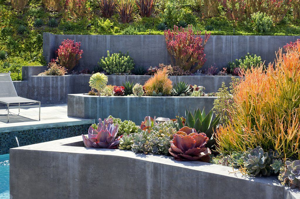 Garden Landscaping Ideas With Higher Concrete Deck And Canopy Http Www Amazadesign Com Garde Succulent Landscape Design Modern Garden Succulent Landscaping,Commercial Interior Design Questionnaire