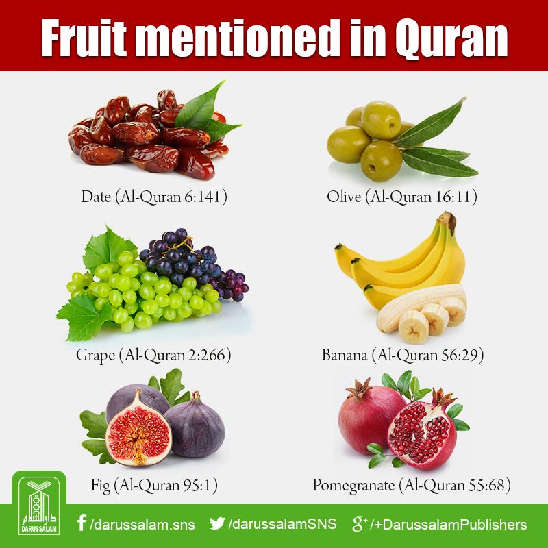 is banana a fruit fruit of islam