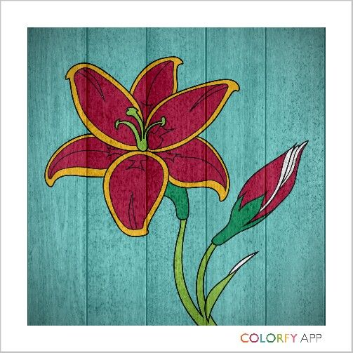 Coloring flower