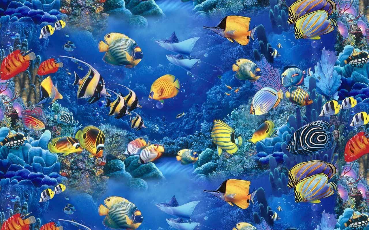 Fish tank wallpaper hd 19201080 aquarium wallpapers 38 fish tank wallpaper hd 19201080 aquarium wallpapers 38 wallpapers adorable wallpapers voltagebd Images
