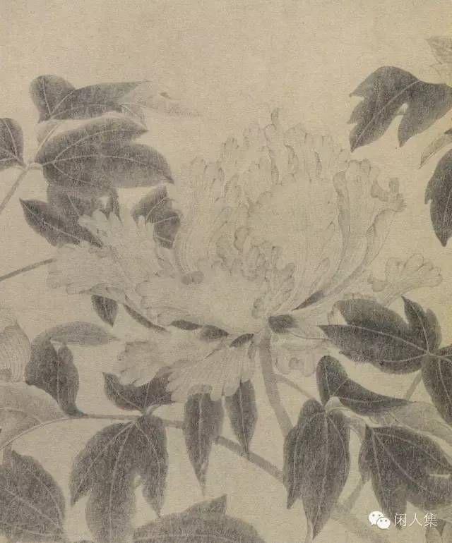 技法圖典  牡丹、桃杏、茶花、玉蘭