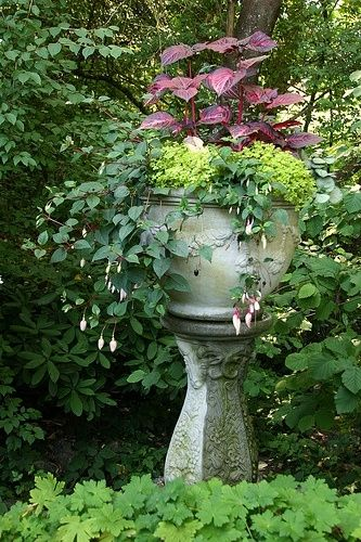 flower pot by fran up on a pedestal pinterest flower gardens and flowers. Black Bedroom Furniture Sets. Home Design Ideas