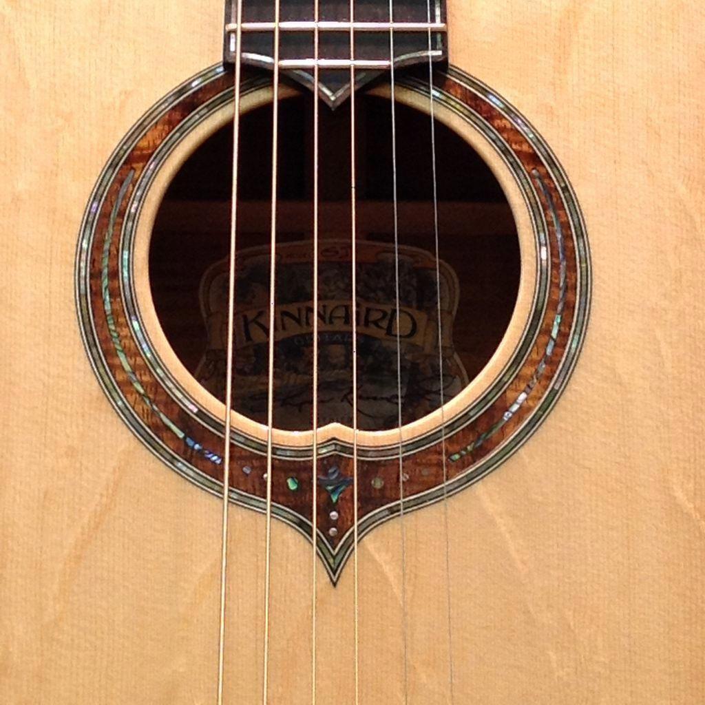 Electric Guitar Jack Plate Electric Guitar Ibanez Rg Guitarcenter Guitarplayer Electricguitar Guitar Inlay Guitar Acoustic Guitar