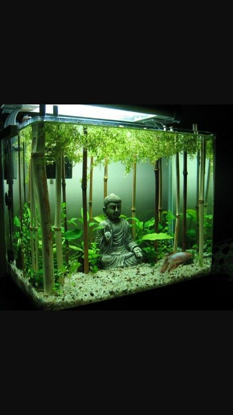 15 Mind Blowing Aquascaping That Makes You Want More Design Inspiration Inc
