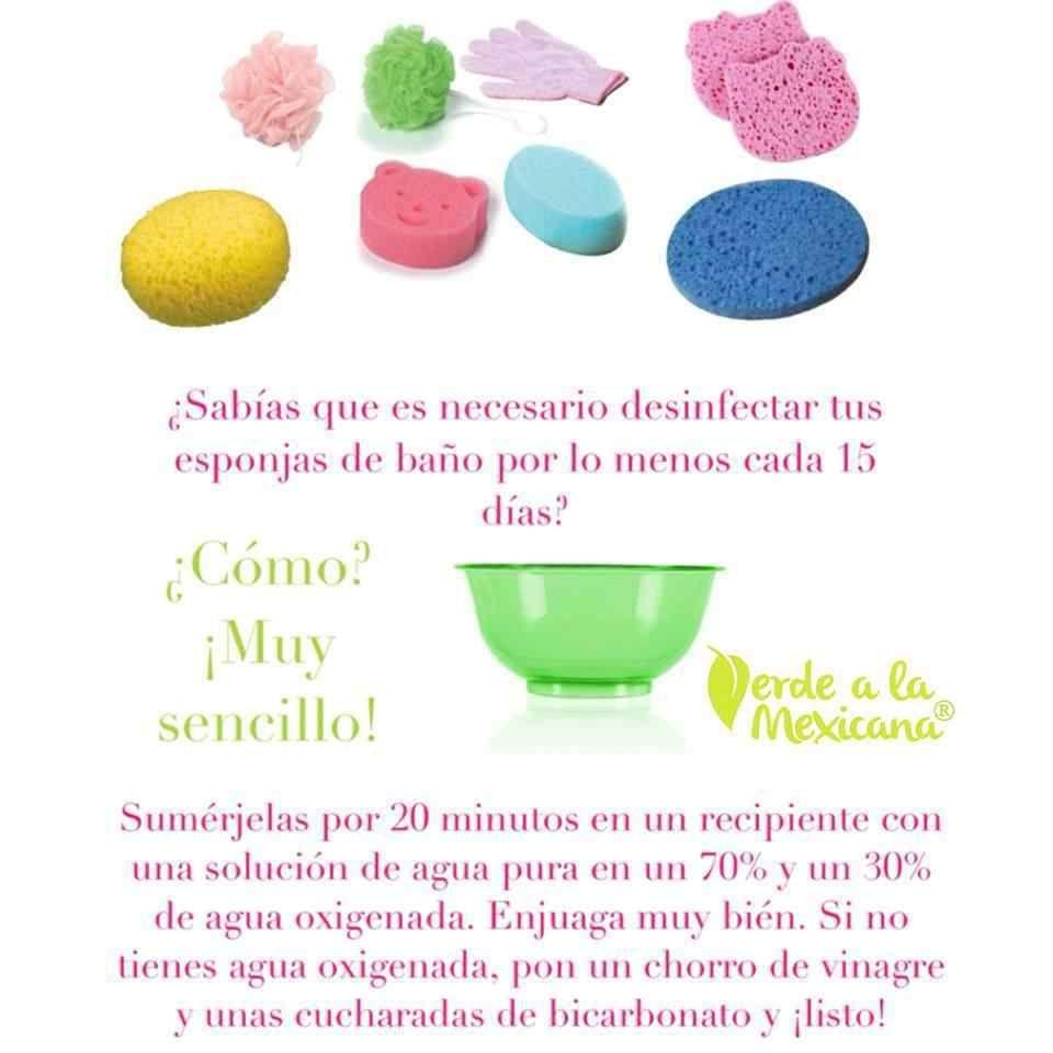 Como Desinfectar Las Esponjas Del Bano Verde A La Mexicana Esponja Esponjas De Bano Trucos De Limpieza