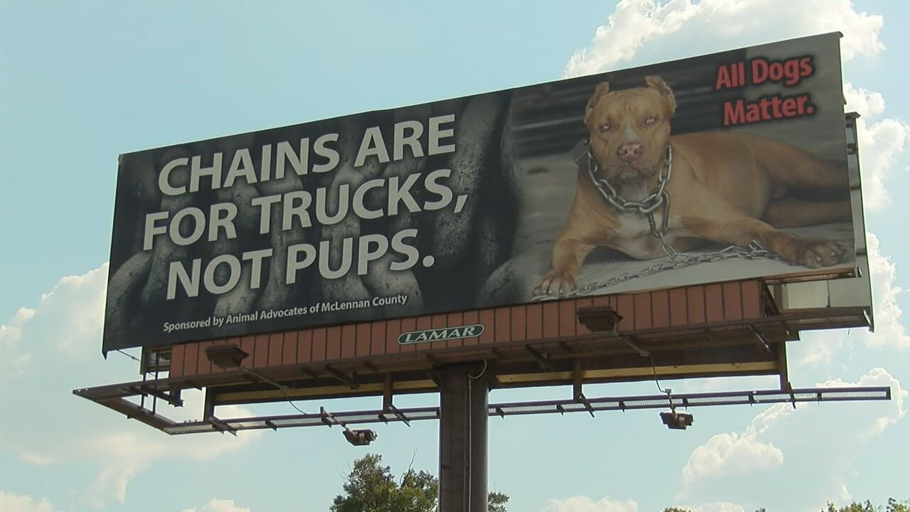 This Texas Unchain The Dog Billboard Is Surprisingly Necessary Dogs Dog Drawing Animal Planet