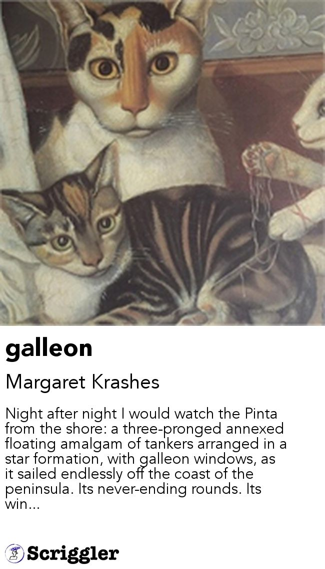 galleon by Margaret Krashes https://scriggler.com/detailPost/story/52127 Night after night I would watch the Pinta from the shore: a three-pronged annexed floating amalgam of tankers arranged in a star formation, with galleon windows, as it sailed endlessly off the coast of the peninsula. Its never-ending rounds. Its win...