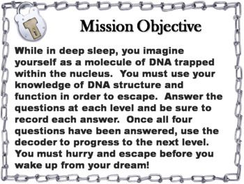 DNA Structure and Function Activity: Biology Escape Room