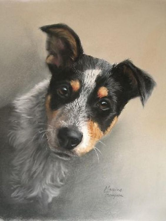 Pin On Pet Portraits