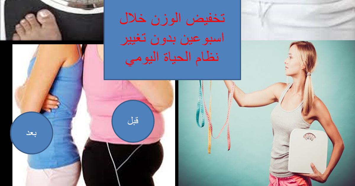 تنزيل الوزن خلال اسبوعين بدون تغيير نظام الحياة اليومي الطريقة الرهيبة للتخلص من الوزن الزائد Natural Food Blog Blog Posts