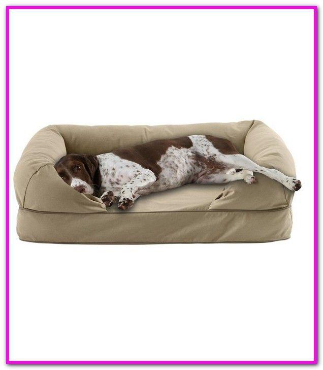 Ll Bean Tempur Pedic Dog Bed | Blanket dog bed, Dog bed large