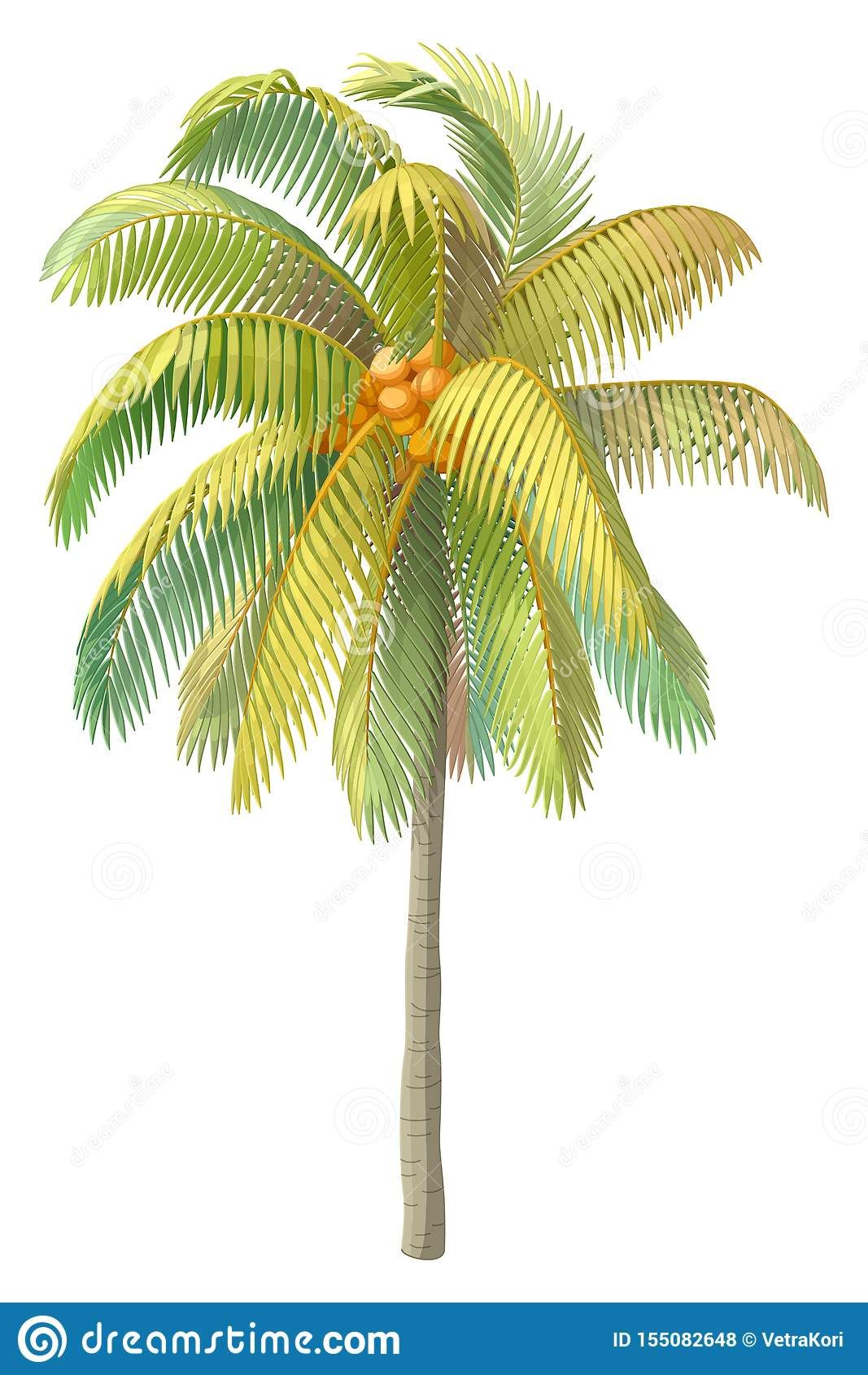 Pin By Marie Danielle On Arbre Palmier Palm Tree Drawing Tree Drawing Clip Art