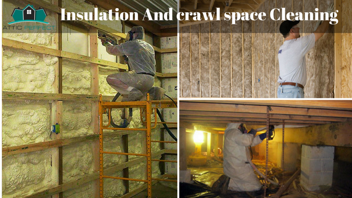 Healthy Home And Reduced Energy Bills Through Clean Attic Home Insulation Best Insulation Insulation
