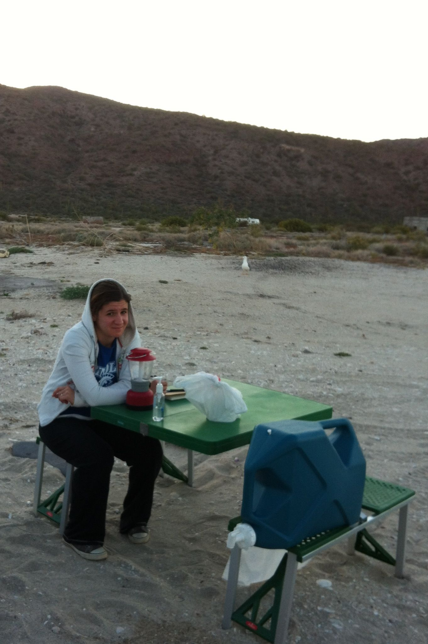 A little bit of misery when the bugs came out and we didn't have any bug spray.  The evening was saved when the bugs left us alone (Mulege).