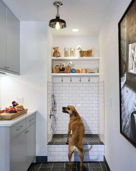 Photo of Top 60 besten Home Dog Wash Station Ideen – Hund Dusche Designs – Mann Stil   Tattoo
