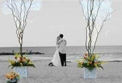Alternative Wedding Arch Idea