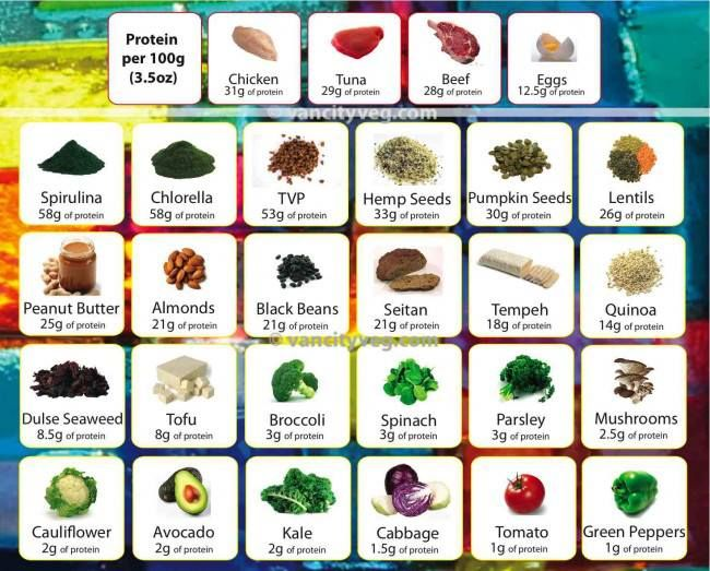 Protine chart only some of the many foods that have protein