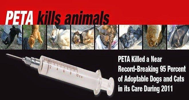 SandRamirez contra el maltrato animal. • www.luchandoporellos.es: PETA MATA ANIMALES INNECESARIAMENTE.