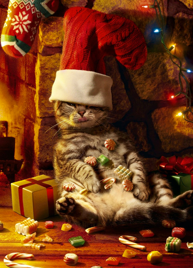 The stockings were hung by the chimney with care.... holiday greeting card: http://dld.bz/