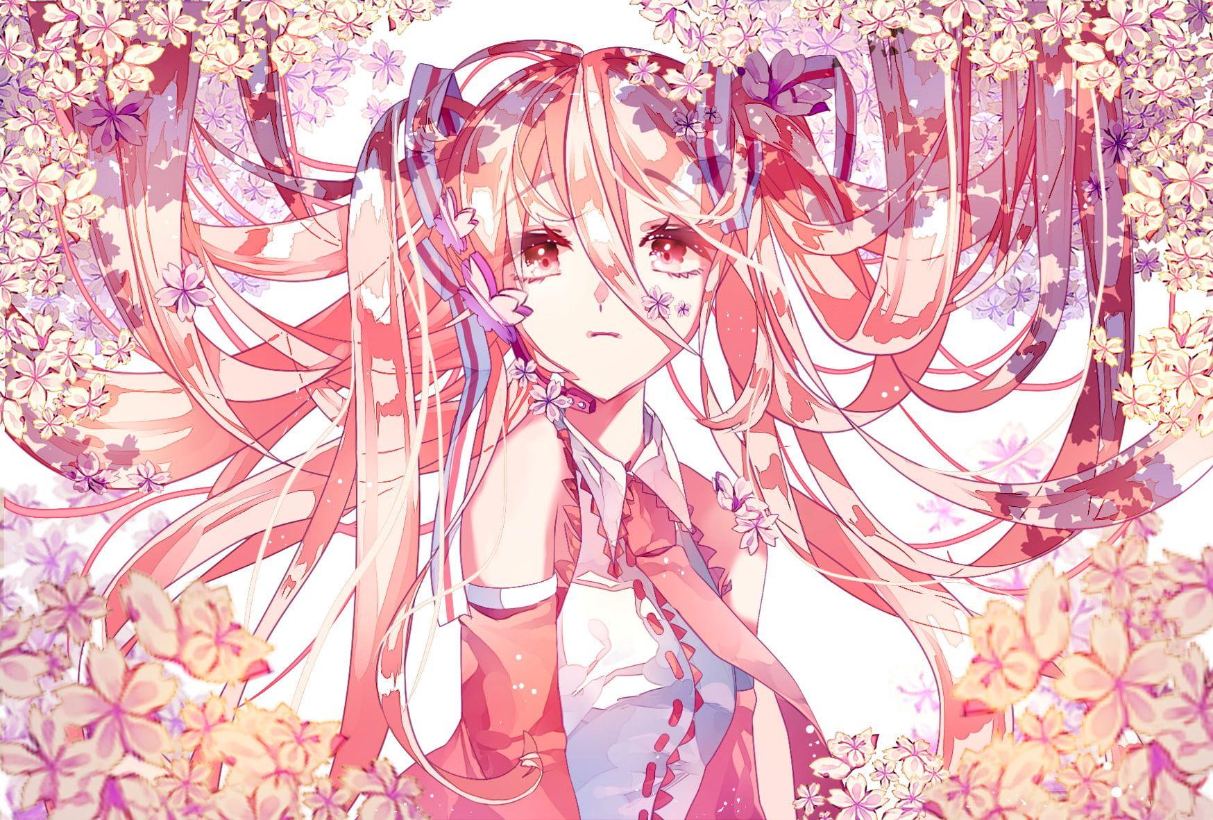 Anime Vocaloid Sakura Miku 720p Wallpaper Hdwallpaper Desktop In 2020 Hatsune Miku Anime Vocaloid