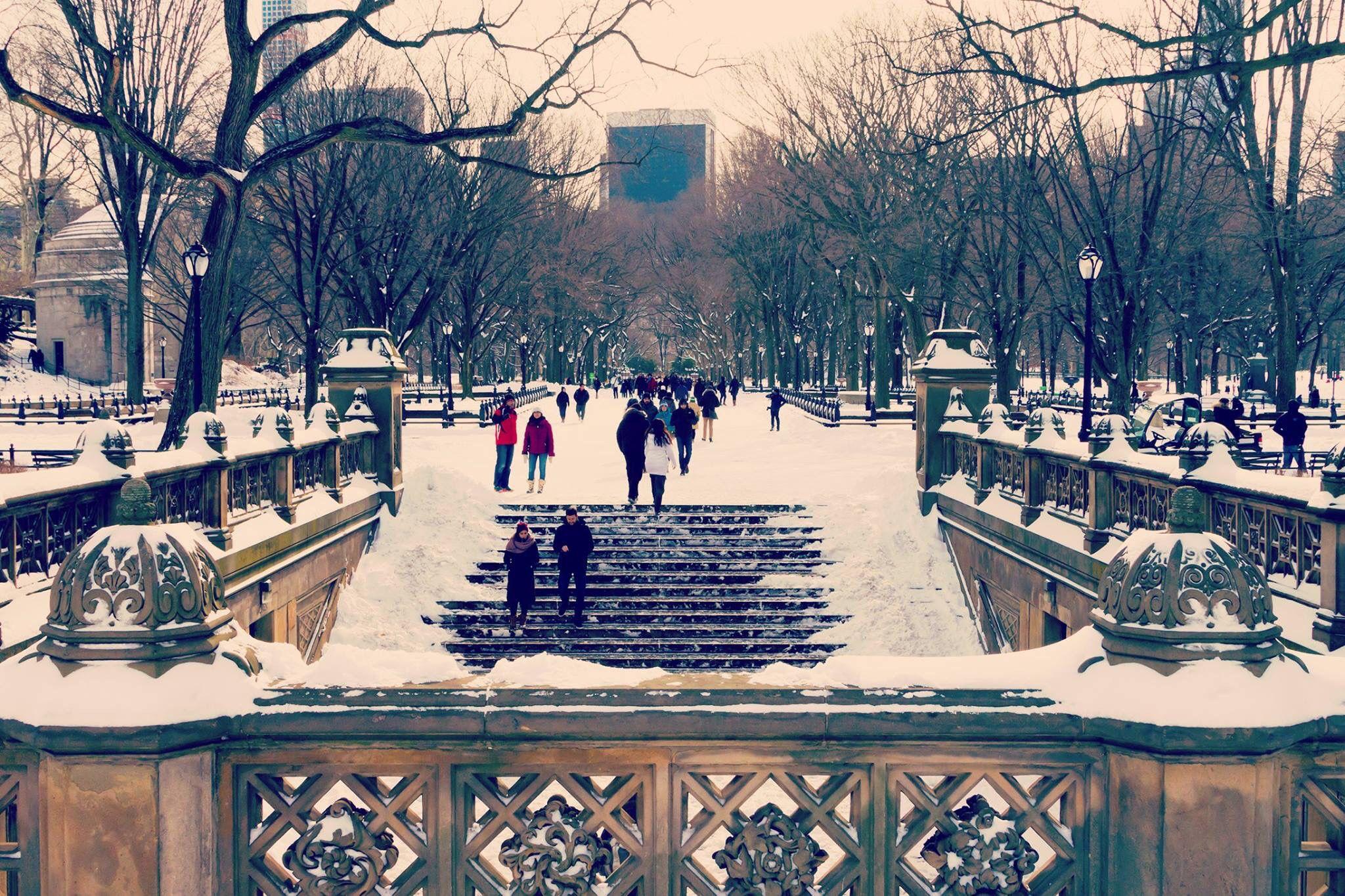 Central Park NY City