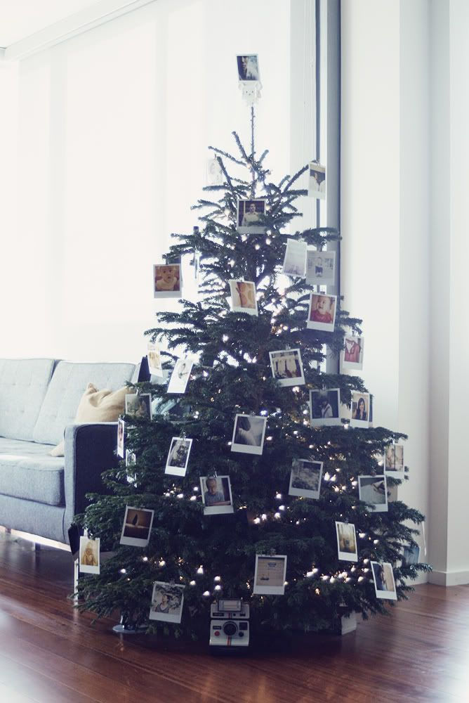 A Polaroid Christmas Tree Carey Christmas Trees Santas