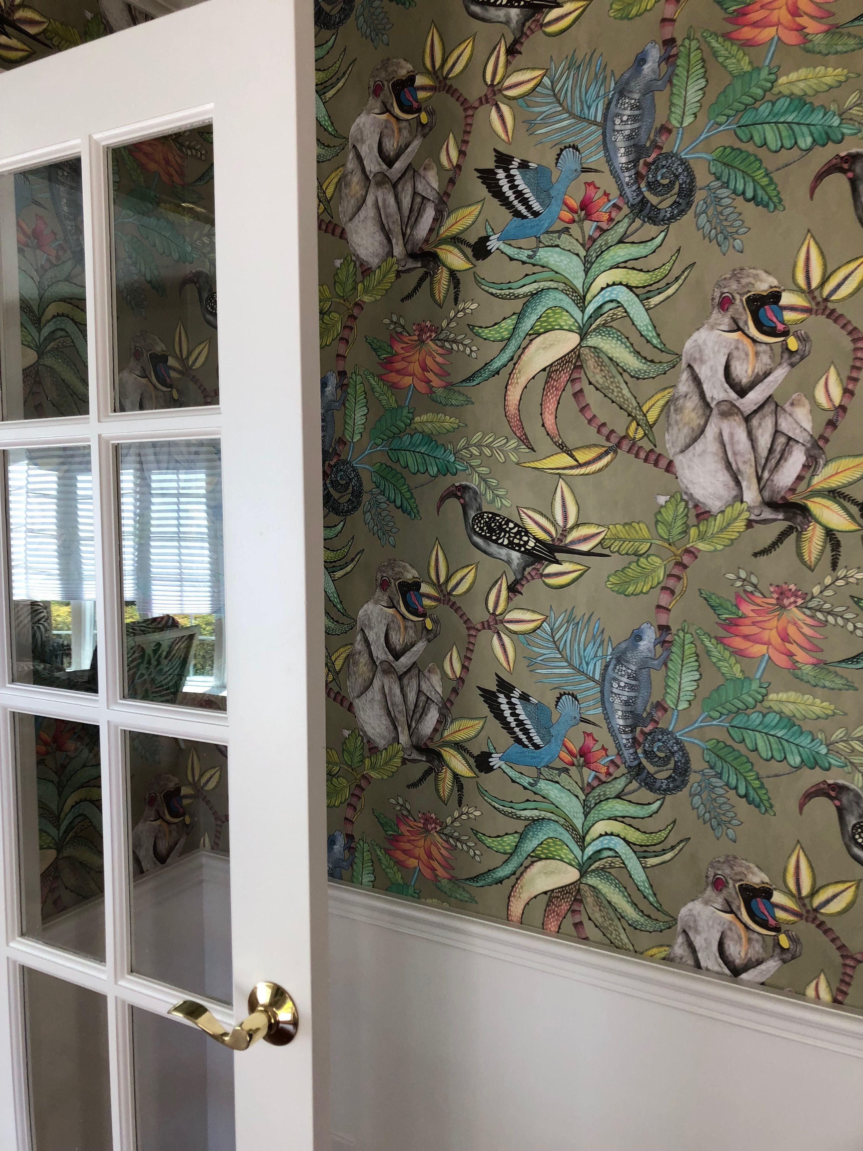 Cole & Sons savuti wallpaper in 2019 Living room decor