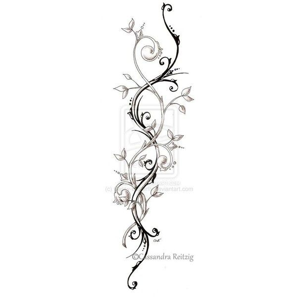 tendril tattoo drawing by cassandrareitzig liked on. Black Bedroom Furniture Sets. Home Design Ideas