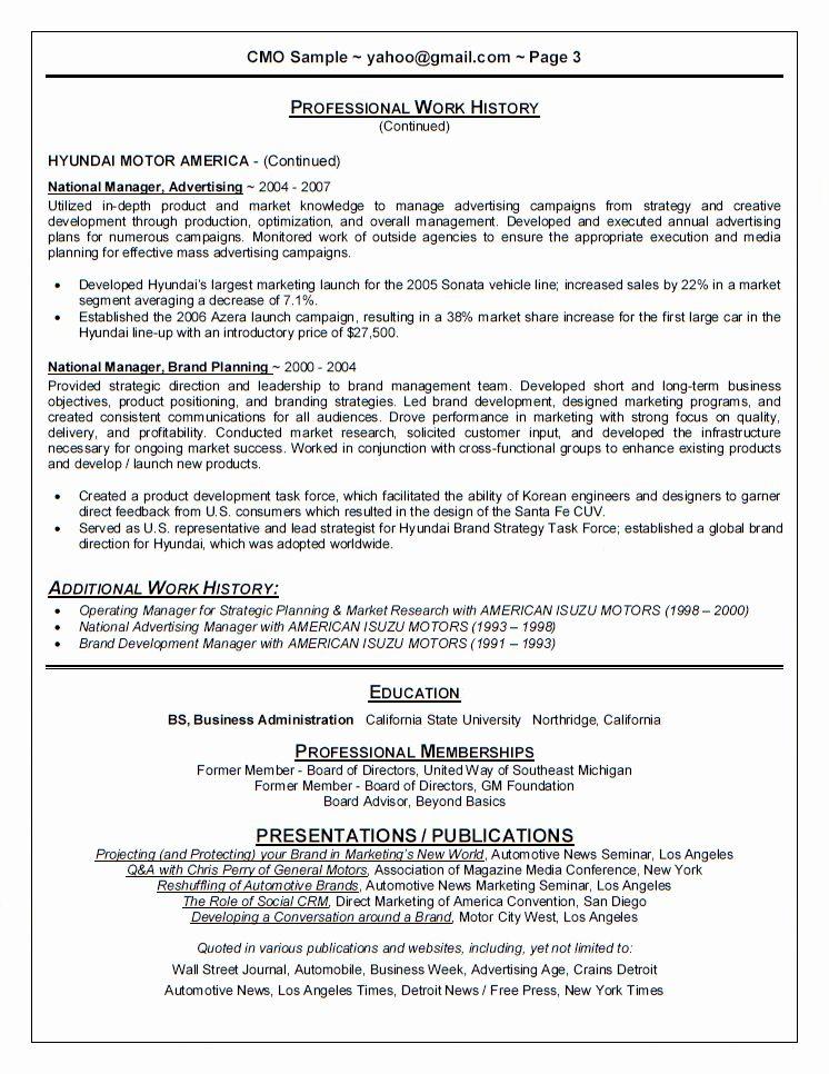 Chief Marketing Officer Resume Luxury Chief Marketing Ficer Cmo Resume