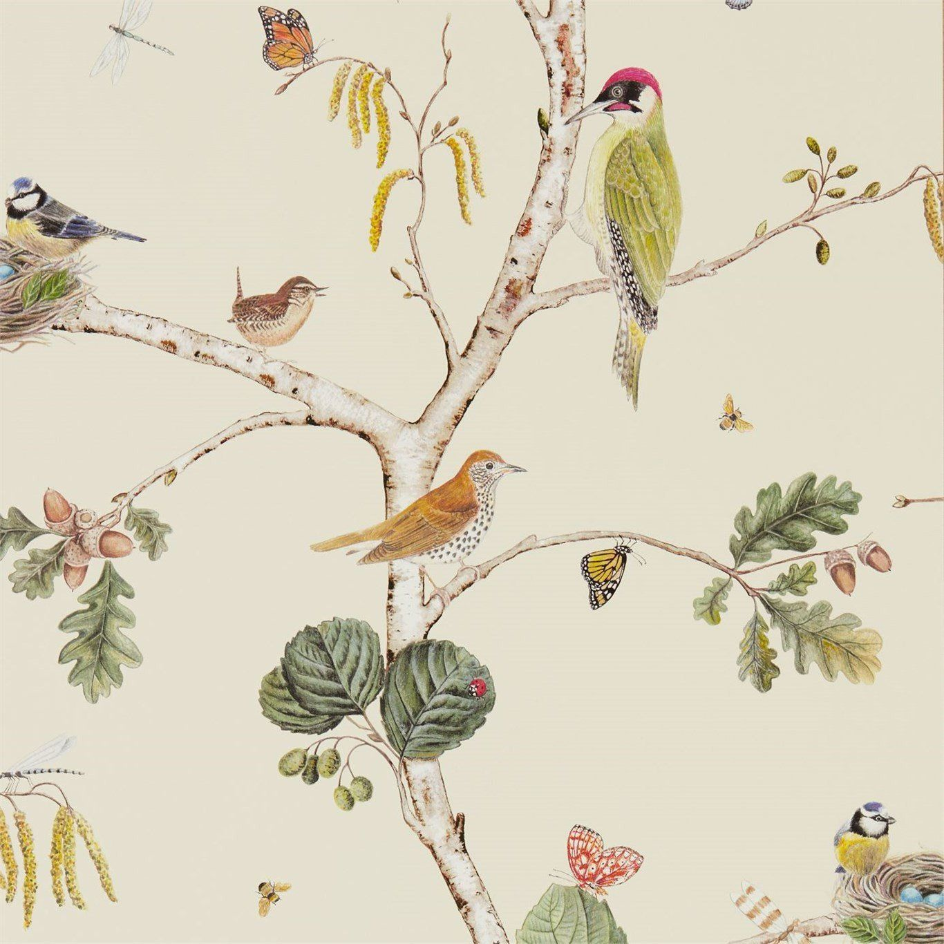 Modern Nature Themed Wallpaper By Sanderson Botanical Bird